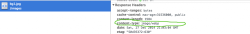 Correct WebP headers when using Chrome