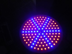 15W Greenhouse LED grow light - Turned on (2/2)